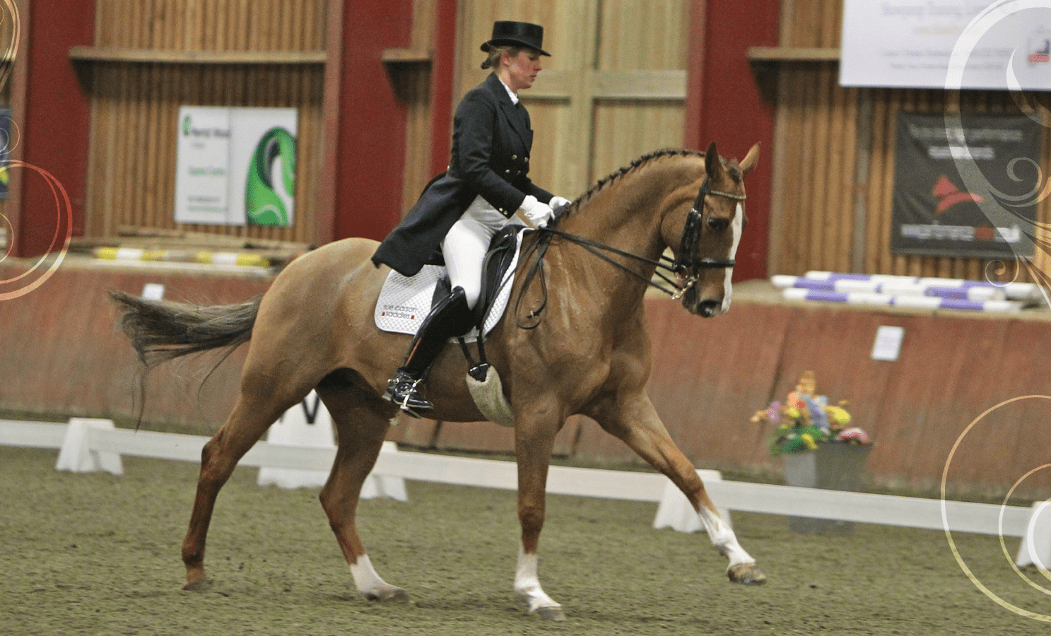 Sjoholm-Patience BHS Registered Instructor, Coach and Dressage Training throughout Sussex and Surrey