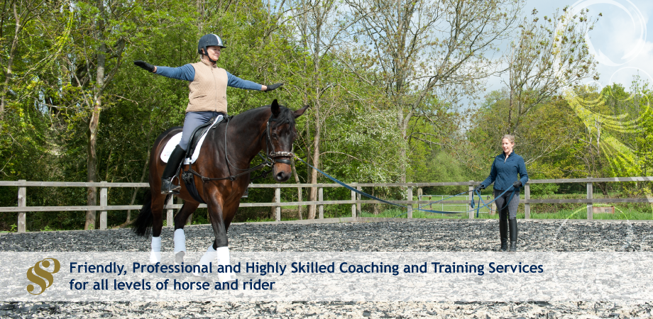 Sjoholm-Patience International Grand Prix Dressage Rider, British Horse Society Accredited Coach and British Dressage Para Coach and Trainer