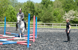 Sarah Sjoholm-Patience Horse and Rider Coaching Services