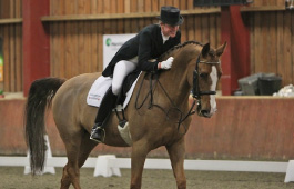 Sarah Sjoholm-Patience Competition Riding Services