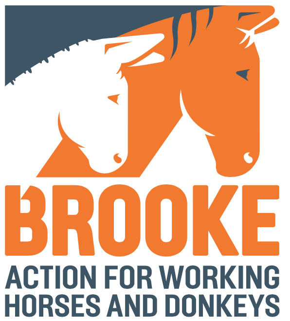 Brooke – Action for working horses and donkeys